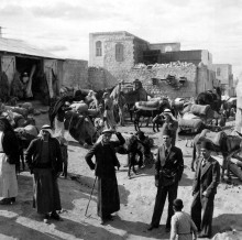 مدينة الطيبه 1929
