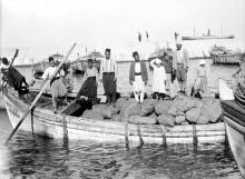 مدينة يافا 1890