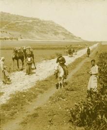 حيفا ,السهول الممتده بين حيفا والطيره في اواخر القرن التاسع عشر