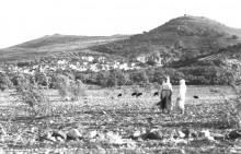 مدينة سخنين عام 1938