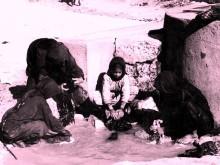 قرية الشجرة المهجرة قضاء طبريا 1933