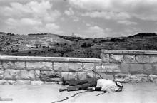 احتلال القدس الشرقية عام 1967