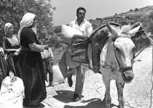 قرية خربة أم صابونة المهجرة قضاء مدينة بيسان 1945