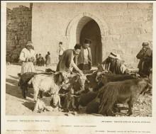 القدس، باب الساهرة عام 1925