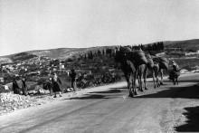قرية يافة الناصره عام 1930